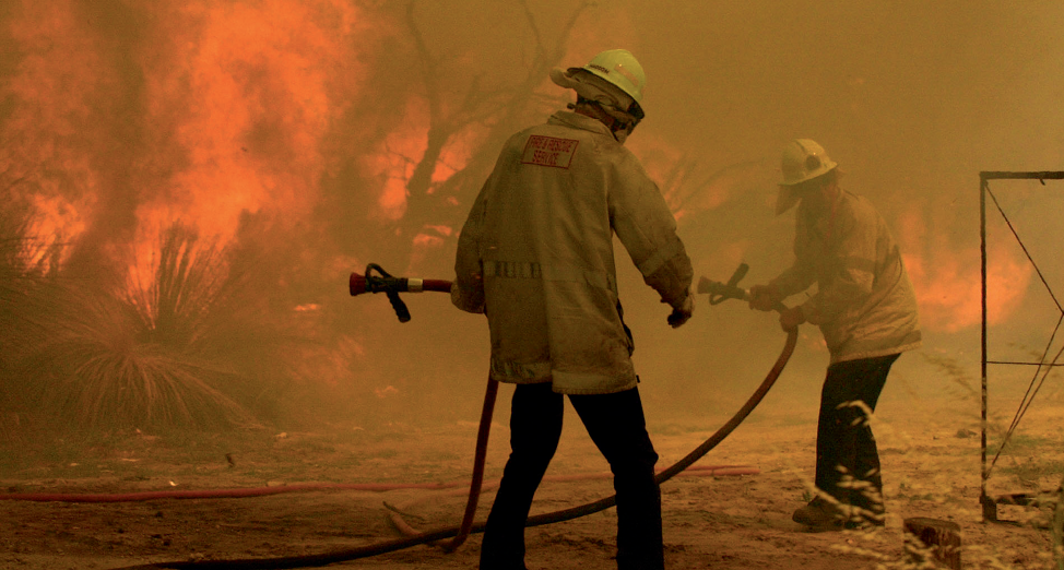 Photograph of firefighters with hoses in a bushfire