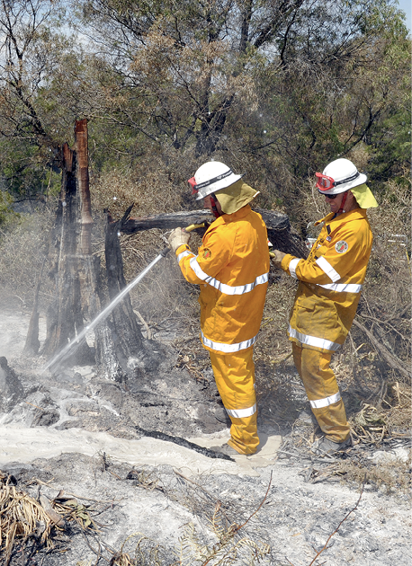 Photograph of firefighters with hoses extinguishing spot fires in bushland