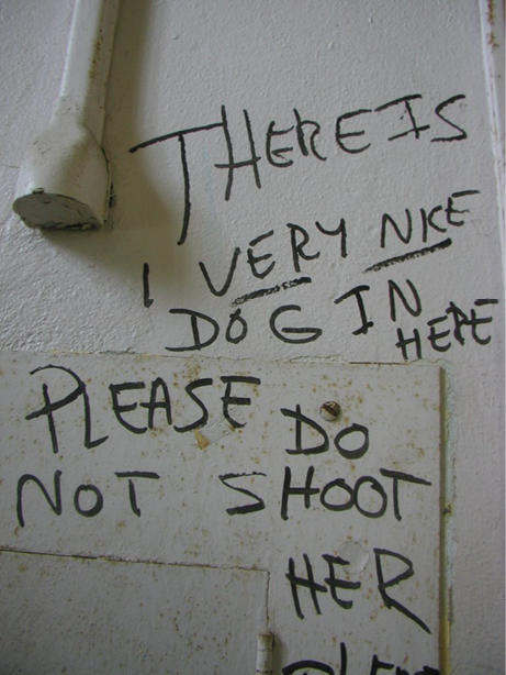 A sign handwritten in black pen on a wall reads 'there is a very nice dog in here, please do not shoot her'.