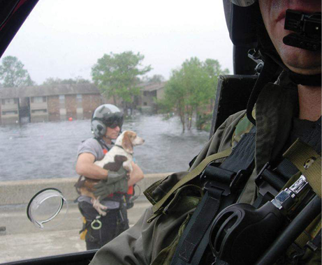 A view from the helicopter on the ground shows a crew member holding a beagle dog. The floodwaters from the storm can be seen in the background.