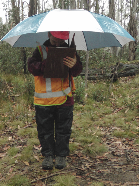 A man dressed in protective clothing, orange safety vest, boots and hard hat and carrying un umbrella is standing in bushland, writing in a clipboard folder.