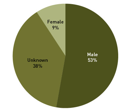 A pie graph of the percentage of drivers who drove into floodwater by gender:
