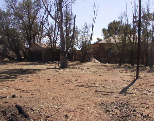 A photo of burnt grassland, with a few trees and a building in the background.