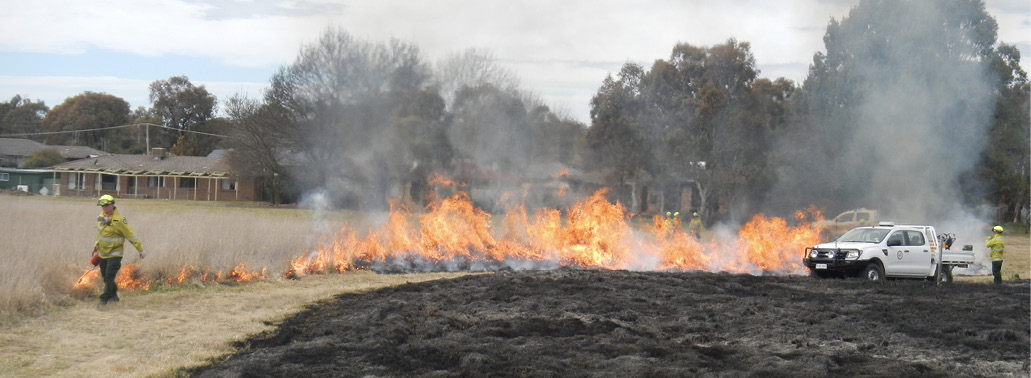Photo showing fire crews lighting a grass fire. A blackened area of the grass has already been burnt. A firefighter is standing near a vehicle while another worker walks along the edge of the unburnt area using a device to establish the fire.