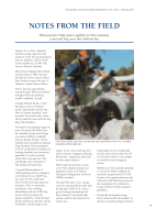 Thumbnail of NOTES FROM THE FIELD: FESA provides USAR canine...